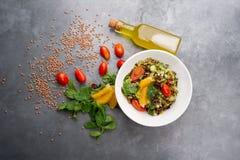 可口素食扁豆沙拉用柠檬、薄菏和西红柿 库存图片