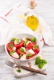 可口caprese沙拉用成熟蕃茄和无盐干酪乳酪与新鲜的蓬蒿离开 烹调意大利语的食品成分 免版税库存图片