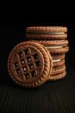 可可粉曲奇饼 免版税图库摄影