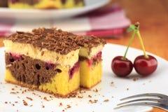 可可粉樱桃蛋糕,称`多瑙河波浪` 与香草奶油和巧克力的上面 免版税库存照片