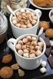 可可粉用蛋白软糖和曲奇饼,顶视图 免版税库存图片