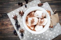 可可粉饮料用蛋白软糖和桂香 免版税图库摄影