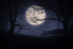 可怕万圣夜风景在与树和满月的晚上 免版税图库摄影