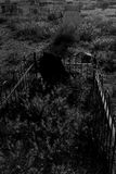 可怕公墓坟茔 库存图片