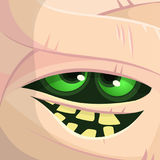 可怕动画片妖怪妈咪面孔传染媒介 逗人喜爱的方形的具体化或象 万圣节例证月亮晚上 免版税库存图片