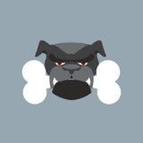 可怕狗头 恼怒的牛头犬和骨头 宠物头 免版税库存照片