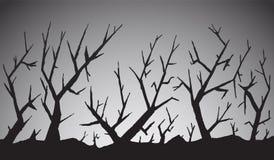 可怕的森林 库存照片