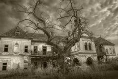 可怕被放弃的万圣节宫殿黑色白色 免版税库存照片