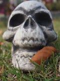 可怕头骨与 免版税图库摄影