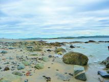 可拉树海湾俄罗斯的岸 免版税库存图片