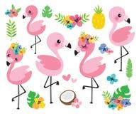 可爱宝贝火鸟和热带花导航例证 向量例证