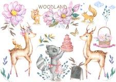 可爱宝贝鹿和roccoon与鲜美蛋糕动物被隔绝的例证孩子的 漂泊水彩boho森林鹿家庭 皇族释放例证