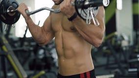 可爱的人抽的胳膊干涉做与杠铃的锻炼在健身房的训练期间 股票视频