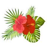 可爱的传染媒介热带花束 木槿和monstera叶子 异乎寻常的花和棕榈叶 皇族释放例证