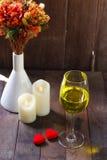 可爱的光滑的口气饮用的酒在情人节 免版税库存照片