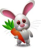 可爱的兔子拿着红萝卜 免版税库存照片