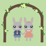 可爱的兔宝宝 图库摄影