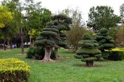 可爱的公园在天津,中国 库存图片