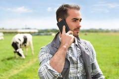 年轻可爱的农夫在有母牛的一个牧场地使用机动性 免版税库存照片