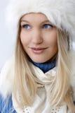 可爱的北欧妇女冬天画象  库存图片
