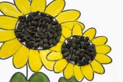 可爱的向日葵的手工制造图片 绘与黄色和绿色树胶水彩画颜料和被胶合的黑种子 在白色背景的艺术 库存照片
