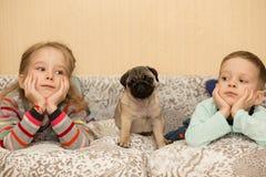 可爱的哈巴狗小狗和逗人喜爱的孩子,手表电视 免版税库存照片