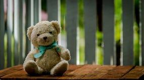 可爱的地毯熊玩偶坐木桌 免版税库存照片