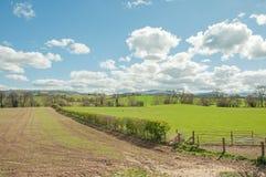 可爱的夏令时风景在威尔士乡下 库存图片