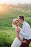 可爱的夫妇、摆在领域的新娘和新郎在日落,生活方式期间 库存照片