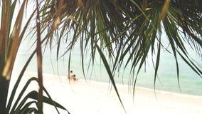 可爱的夫妇坐海滩 图库摄影