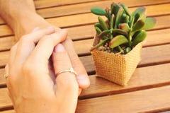 可爱的夫妇特写镜头递拿着与一棵植物的togeher在木桌上,爱概念,恋人有日期在咖啡馆 免版税库存图片