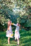可爱的女孩在开花的苹果庭院里在晴朗的春日 免版税库存图片
