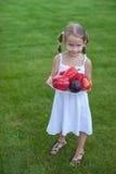 可爱的女孩在有菜板材的一个庭院里  免版税图库摄影