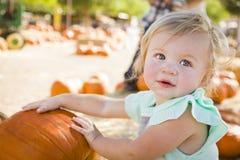 可爱的女婴获得乐趣在南瓜补丁 免版税图库摄影