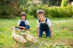可爱的学龄前孩子,男孩兄弟,使用与一点d 免版税库存照片