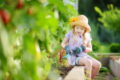 可爱的小女孩佩带的草帽和儿童的使用与她的玩具园艺工具的庭院手套自一间温室在夏日 免版税图库摄影