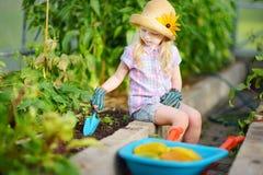可爱的小女孩佩带的草帽和儿童的使用与她的玩具园艺工具的庭院手套自一间温室在夏日 免版税库存照片