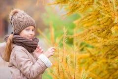 可爱的小女孩画象有在秋天的黄色树背景 图库摄影