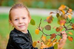 可爱的小女孩画象有黄色和桔子的留下花束户外美好的秋天天 库存图片