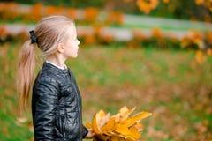 可爱的小女孩画象有黄色的在秋天把花束留在滑行车 库存照片