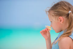 可爱的小女孩画象有花赤素馨花的海滩暑假 免版税库存图片