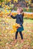 可爱的小女孩画象有黄色和桔子的留下花束户外美好的秋天天 免版税图库摄影