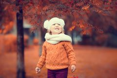 可爱的小孩女孩画象在美好的秋天天 免版税库存图片