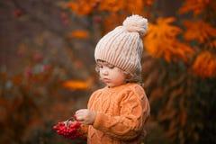 可爱的小孩女孩画象在美好的秋天天 库存照片
