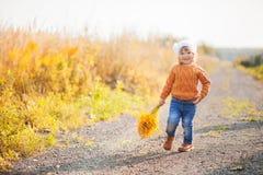 可爱的小孩女孩画象在美好的秋天天 库存图片