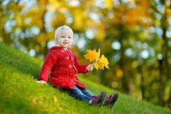 可爱的小孩女孩画象在秋天天 免版税图库摄影