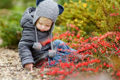 可爱的小孩女孩画象在秋天天 库存照片