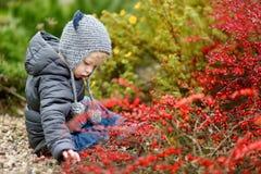 可爱的小孩女孩画象在秋天天 图库摄影