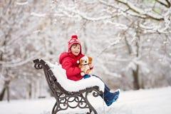 可爱的小孩,男孩,使用在一个多雪的公园,拿着特德 库存图片