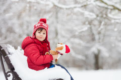可爱的小孩,男孩,使用在一个多雪的公园,拿着特德 免版税库存照片